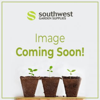 SW garden image coming soon